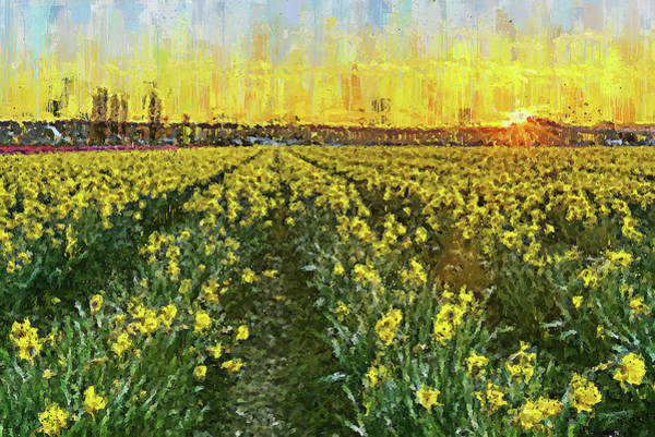 Painting - Skagit Valley - 12 by Andrea Mazzocchetti