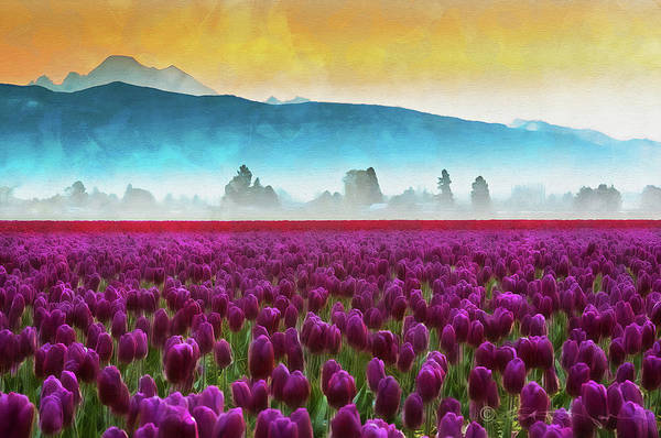 Painting - Skagit Valley - 13 by Andrea Mazzocchetti