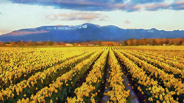 Painting - Skagit Valley - 14 by Andrea Mazzocchetti