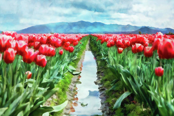 Painting - Skagit Valley - 18 by Andrea Mazzocchetti