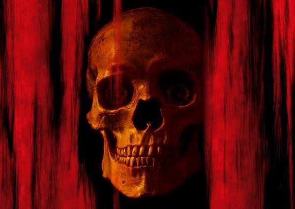 Pirates Painting - Skeleton by ArtMarketJapan