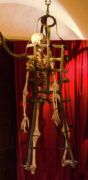 Mfa Wall Art - Photograph - Skeleton  In Torturedevise by Iris Richardson
