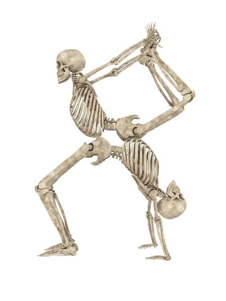 Wall Art - Digital Art - Skeleton Yoga 003 by Betsy Knapp
