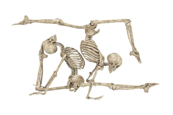 Wall Art - Digital Art - Skeleton Yoga 004 by Betsy Knapp