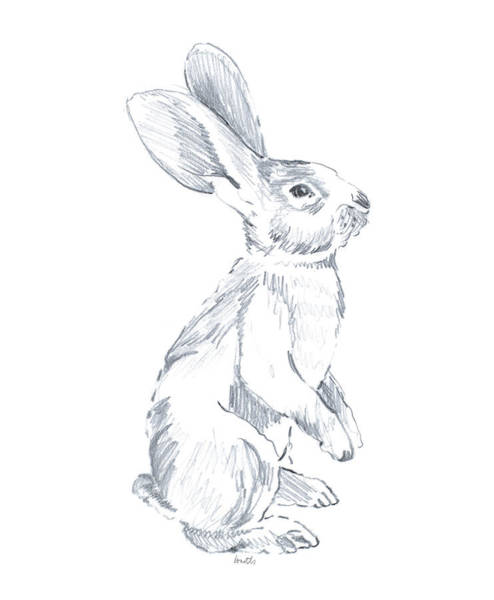 Wall Art - Drawing - Sketched Rabbit I by Lanie Loreth