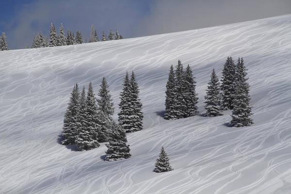 Ski Tracks Wall Art - Photograph - Ski Tracks In Powder Snow by John Kieffer