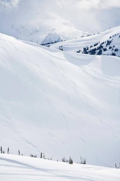 Ski Tracks Wall Art - Photograph - Ski Tracks On Whistler Blackcomb by Radius Images