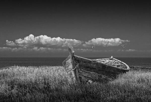 Photograph - Skiffs Final Resting Place In Black And White by Randall Nyhof