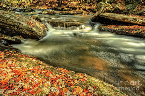 Photograph - Skinner Brook Brookside Park Grantham New Hampshire by Edward Fielding