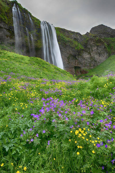 Photograph - Skogafoss Waterfall Iceland 7011904 by Rick Veldman