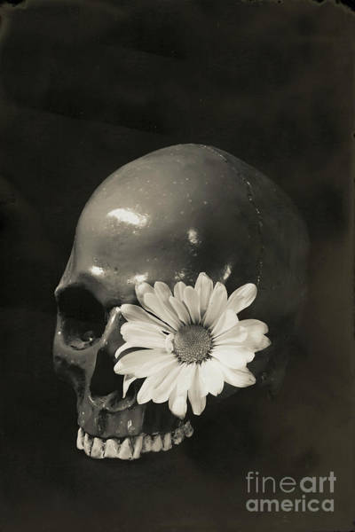 Photograph - Skull And Flower Tin Type by Edward Fielding