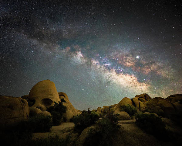 Wall Art - Photograph - Skull Rock And Milky Way by Davorin Mance