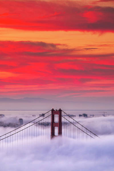 Wall Art - Photograph - Sky High, Golden Gate by Vincent James