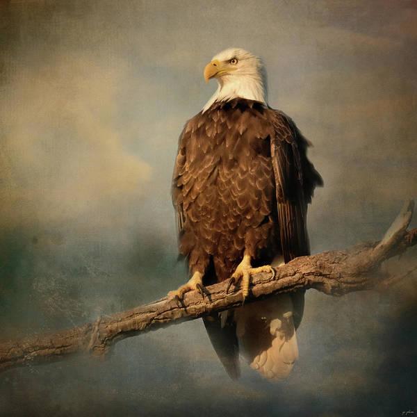 Photograph - Sky Master by Jai Johnson