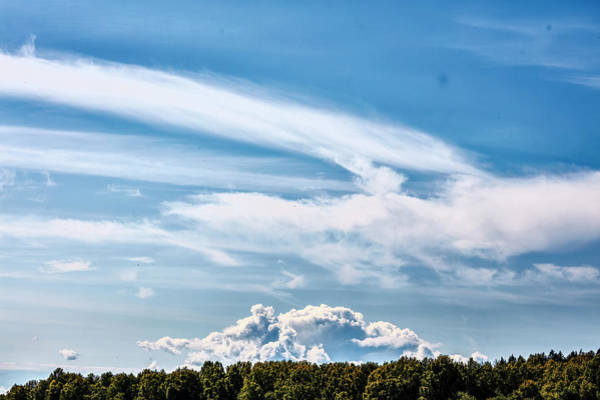Photograph - Sky Over Forest #i9 by Leif Sohlman