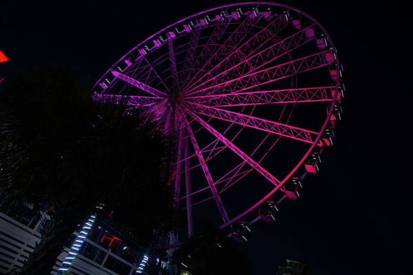 Photograph - Skywheel Pink by Ree Reid