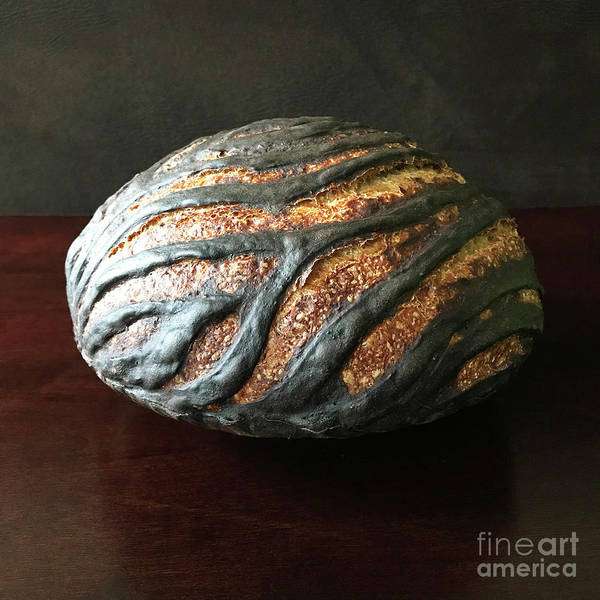 Photograph - Sleek Cocoa Crusted Sourdough 4 by Amy E Fraser