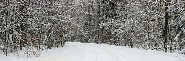 Wall Art - Photograph - Sleeping Bear Dunes Backroad In Winter by Twenty Two North Photography