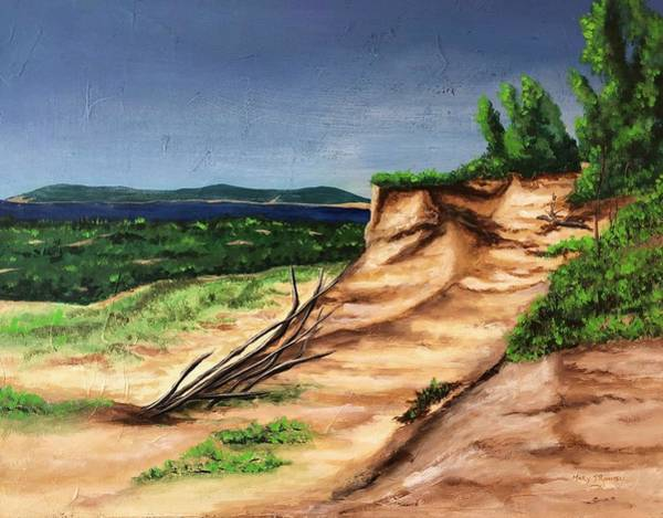 Painting - Sleeping Bear Dunes by Mary Rimmell