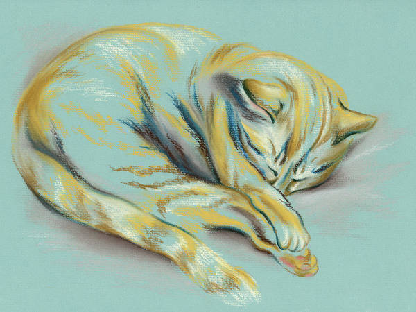 Pastel - Sleeping Tabby Kitten by MM Anderson