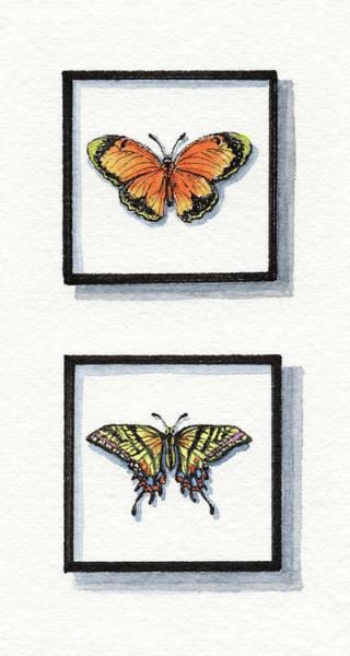 Painting - Sleepy Yellow Sulphur And Two Tailed Swallowtail by Irina Sztukowski