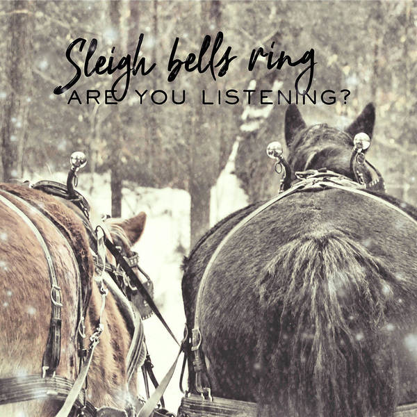 Photograph - Sleigh Bells Quote by Dressage Design