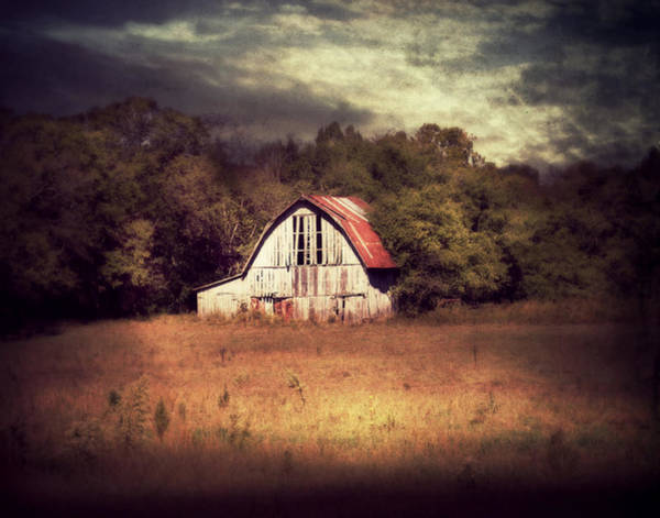 Photograph - Slightly Imperfect by Julie Hamilton