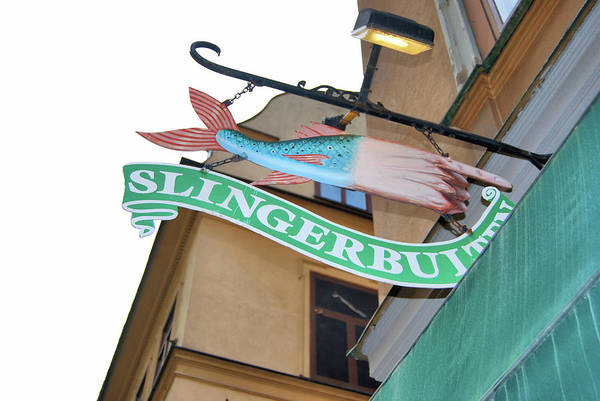 Photograph - Slingerbulten  by JAMART Photography