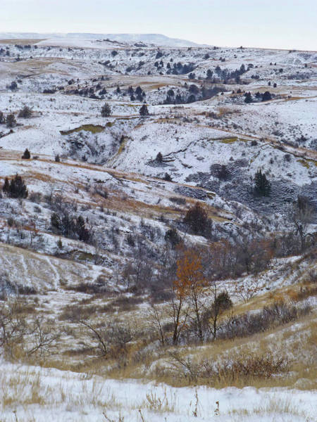 Photograph - Slope County Snowdust by Cris Fulton