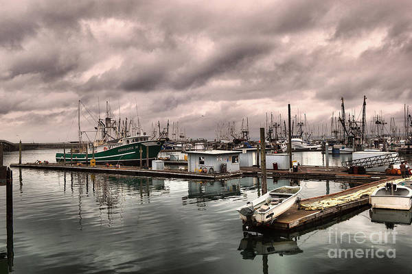 Swan Boats Photograph -  Slow Day At Illwaco by Jeff Swan