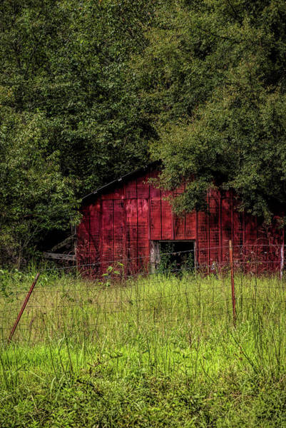 Photograph - Small Barn 2 by Patricia Cale