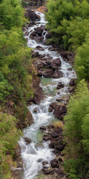 Photograph - Small Cascade 1x2 Vertical by William Dickman