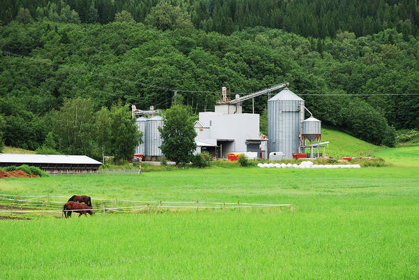 Field Photograph - Small Factory Between Green Field And by Oks mit