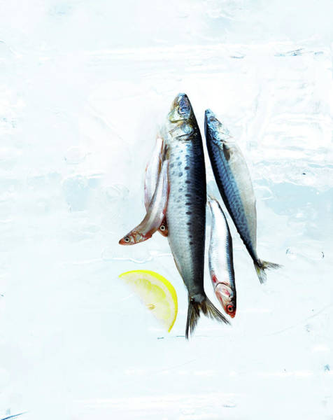Omega Photograph - Small Fish On Block Of Ice With Lemon by Annabelle Breakey