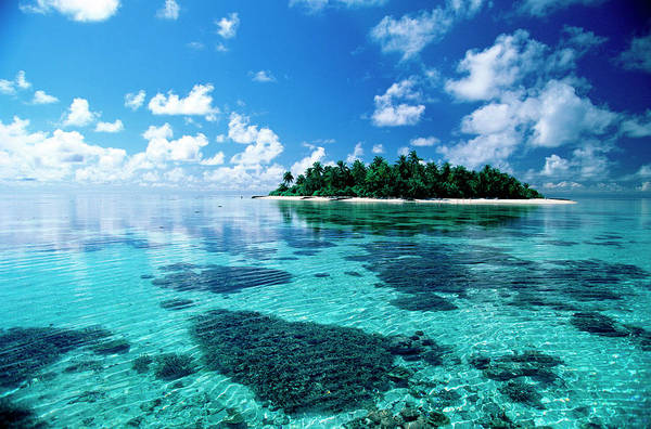 Wall Art - Photograph - Small Island In The Sea by Panoramic Images
