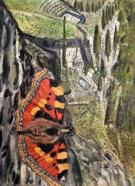 Mixed Media - Small Tortoiseshell by Siobhan Dempsey
