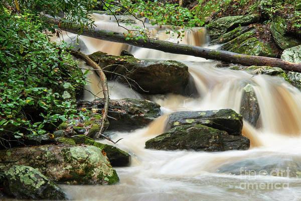 Photograph - Smith Creek Cascades Four by Bob Phillips