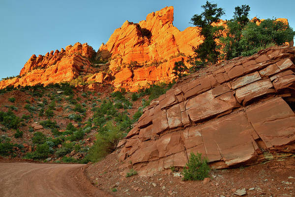 Photograph - Smith Mesa Road In Zion Np by Ray Mathis