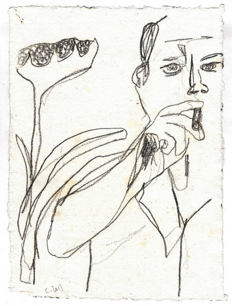 Drawing - Smoker And Sunflower Pencil by Artist Dot