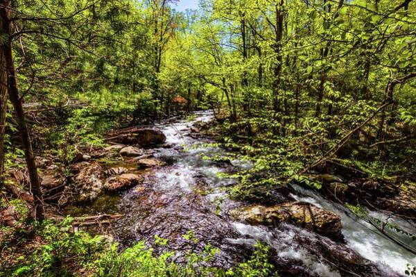 Photograph - Smokey Mountain Waterfall Dsc_0549 by Michael Thomas