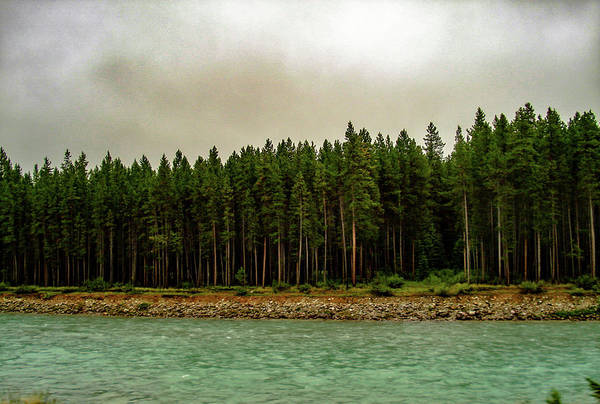 Photograph - Smokey Skies Over A Mountain Creek by Cameron Conway