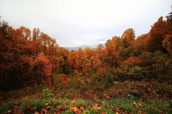 Wall Art - Photograph - Smokies In Autumn by Kevin Wheeler