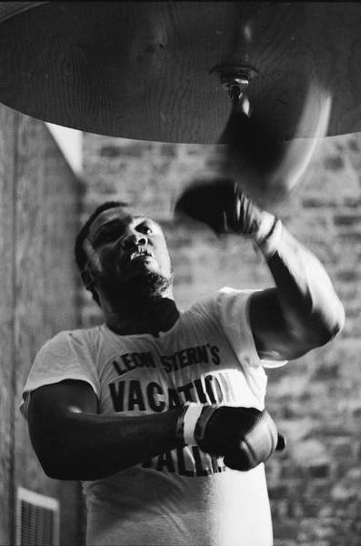 Boxing Photograph - Smokin Joe In Training by John Shearer
