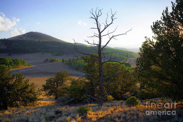 Photograph - Smoky High Plains by Barbara Schultheis