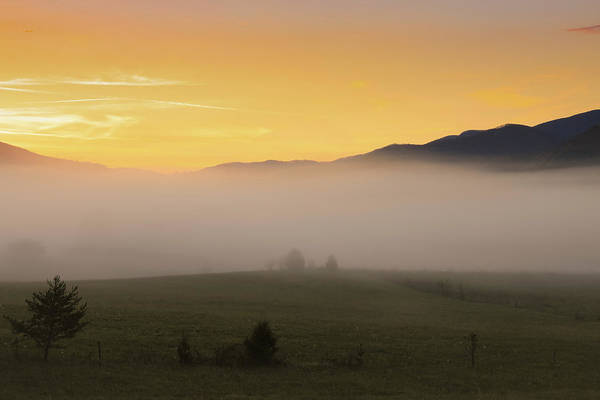 Photograph - Smoky Mountain Sunrise Fog by Dan Sproul