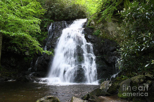 Photograph - Smoky Mountains Waterfall by Phil Perkins
