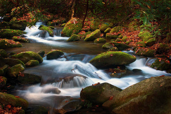 Wall Art - Photograph - Smoky Mtn Autumn Stream by Paul W Faust -  Impressions of Light