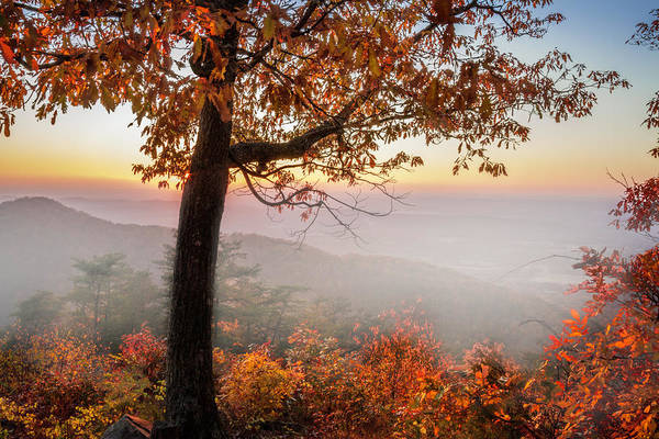 Photograph - Smoky Overlook In The Fog by Debra and Dave Vanderlaan