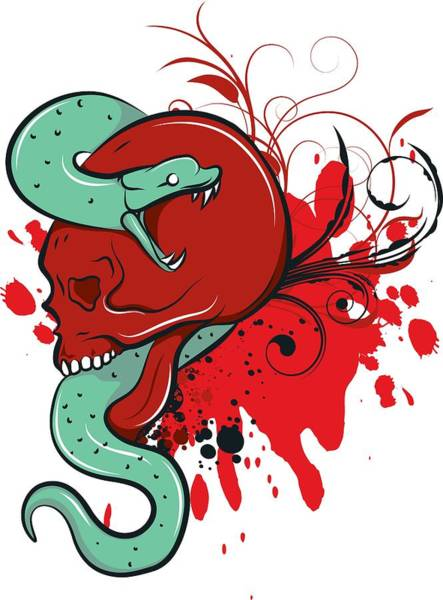 Digital Art - Snake In Skull by Passion Loft
