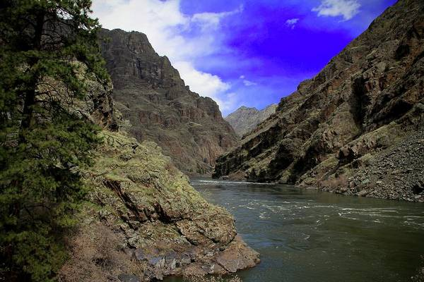 Photograph - Snake River Hells Canyon by Ed  Riche